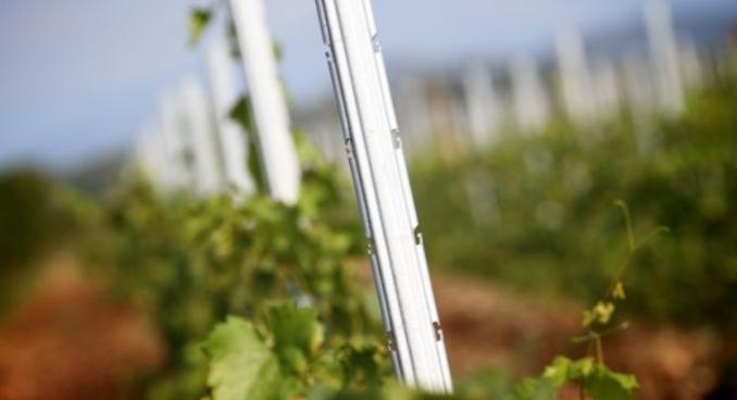 SANGOI innovatív fém támrendszer, szőlőoszlopok